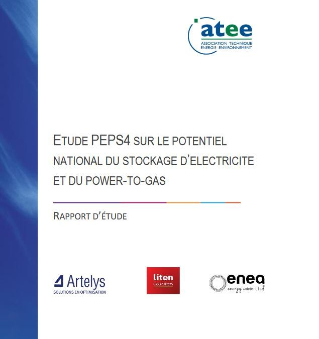 PEPS4: Cost-benefit analysis of electricity storage and power-to-gas at the 2035 horizon in France