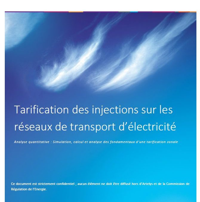 Analysis of transmission costs disparities in the French electricity network