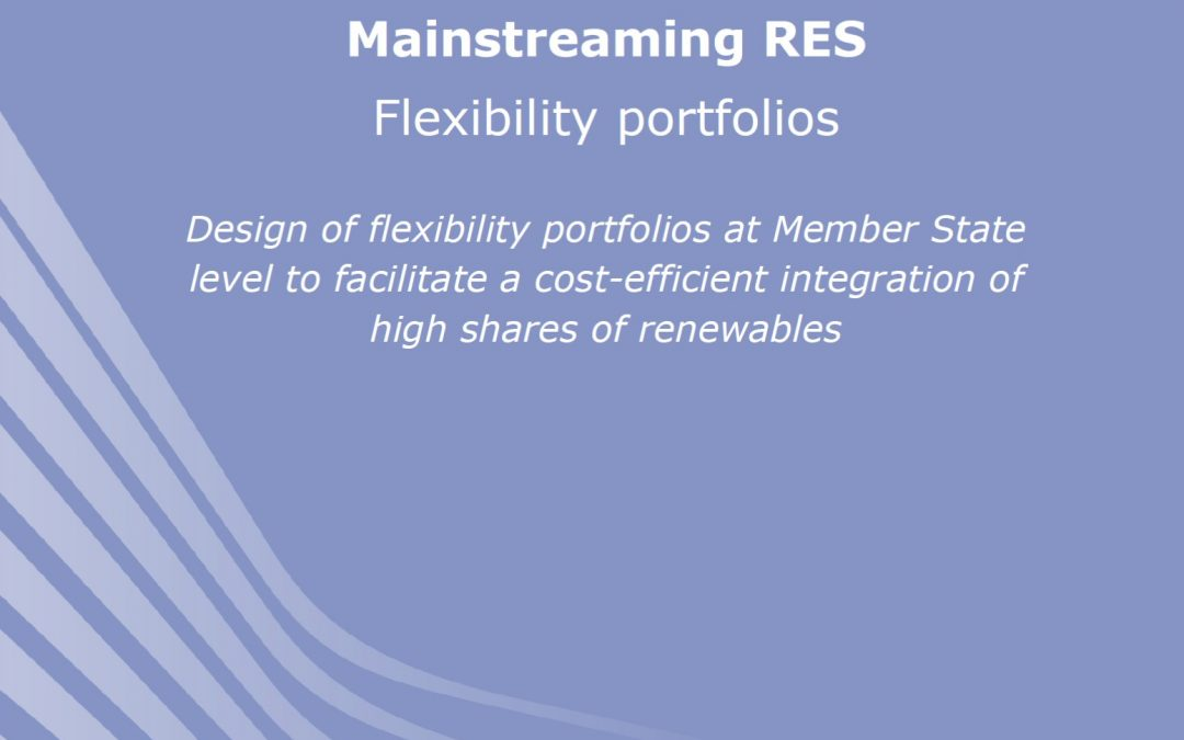 Design of flexibility portfolios to facilitate the integration of renewables
