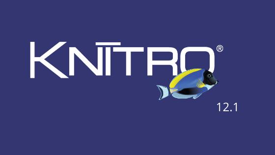 Artelys Knitro 12.1: génération de coupes dérivées de contraintes non linéaires !