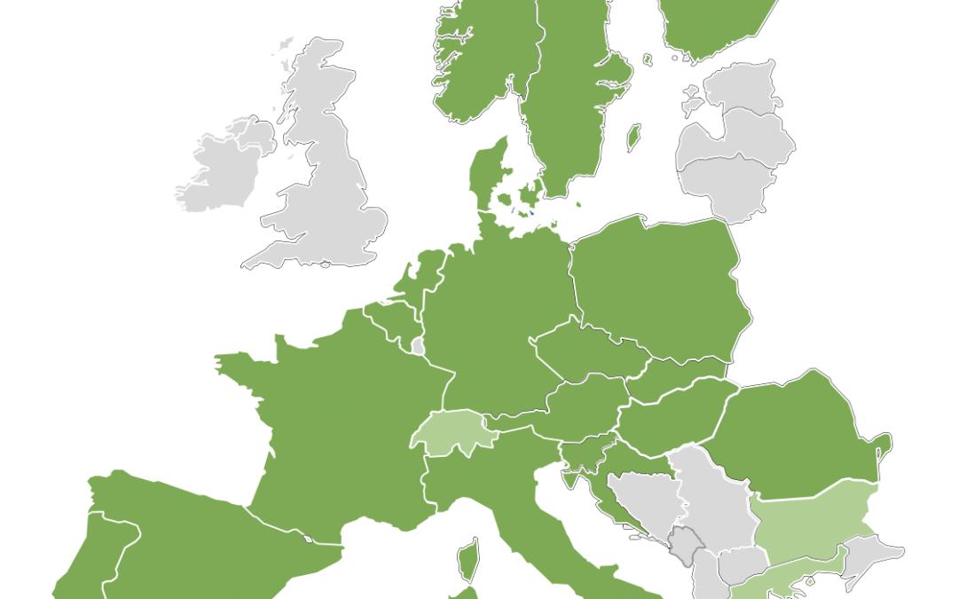 Artelys participe à la conception de l'algorithme européen de clearing du marché aFRR