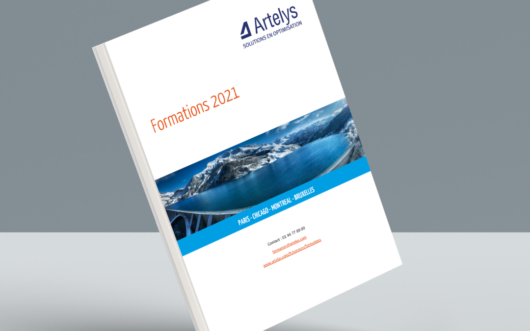 Publication du catalogue 2021 des formations Artelys