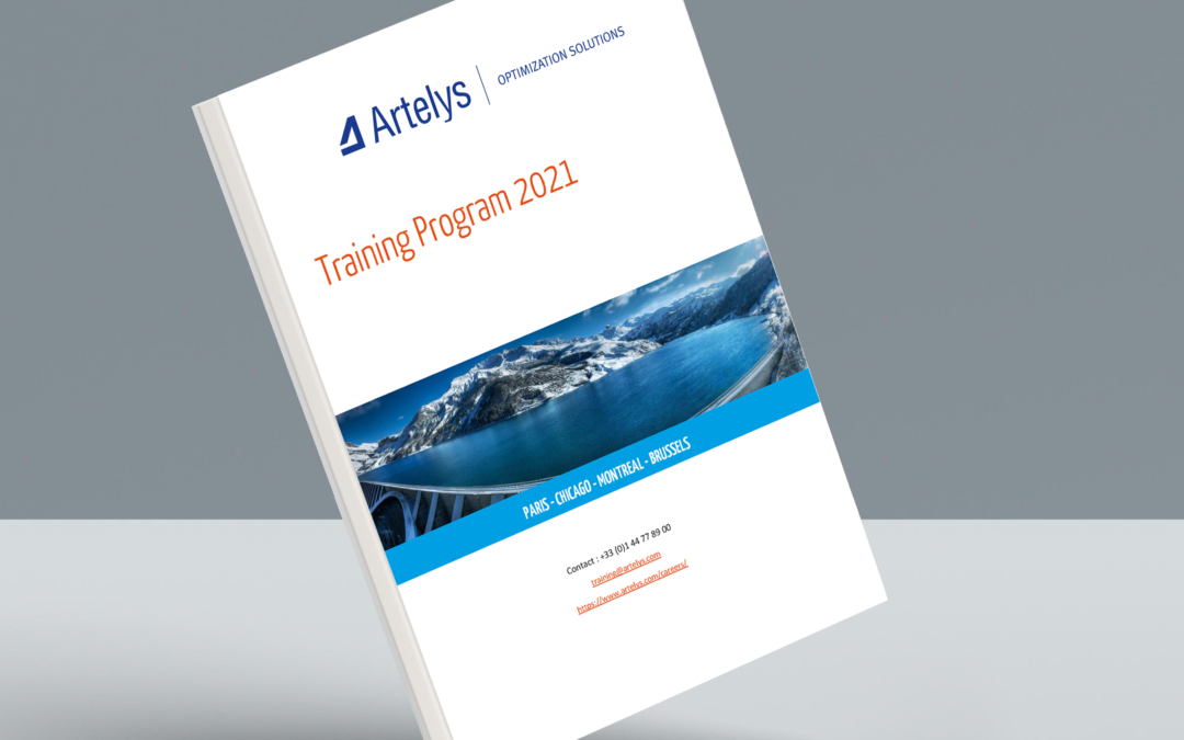 Publication of the 2021 Artelys training program